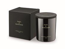 Boutique Candle 8oz Basil & Mandarín 5538