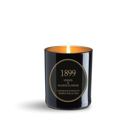 Gold Edition Candle 8oz Ginger & Orange Blossom 6670