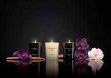 Luxury Gift Set 3x2.4oz Bulgarian Rose, Black Orchid & Lily, Moroccan Cedar SETS3MJ2