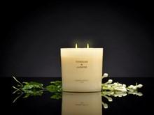Boutique 2 wick XL Candle 21oz Tuberose & Jasmine 6639